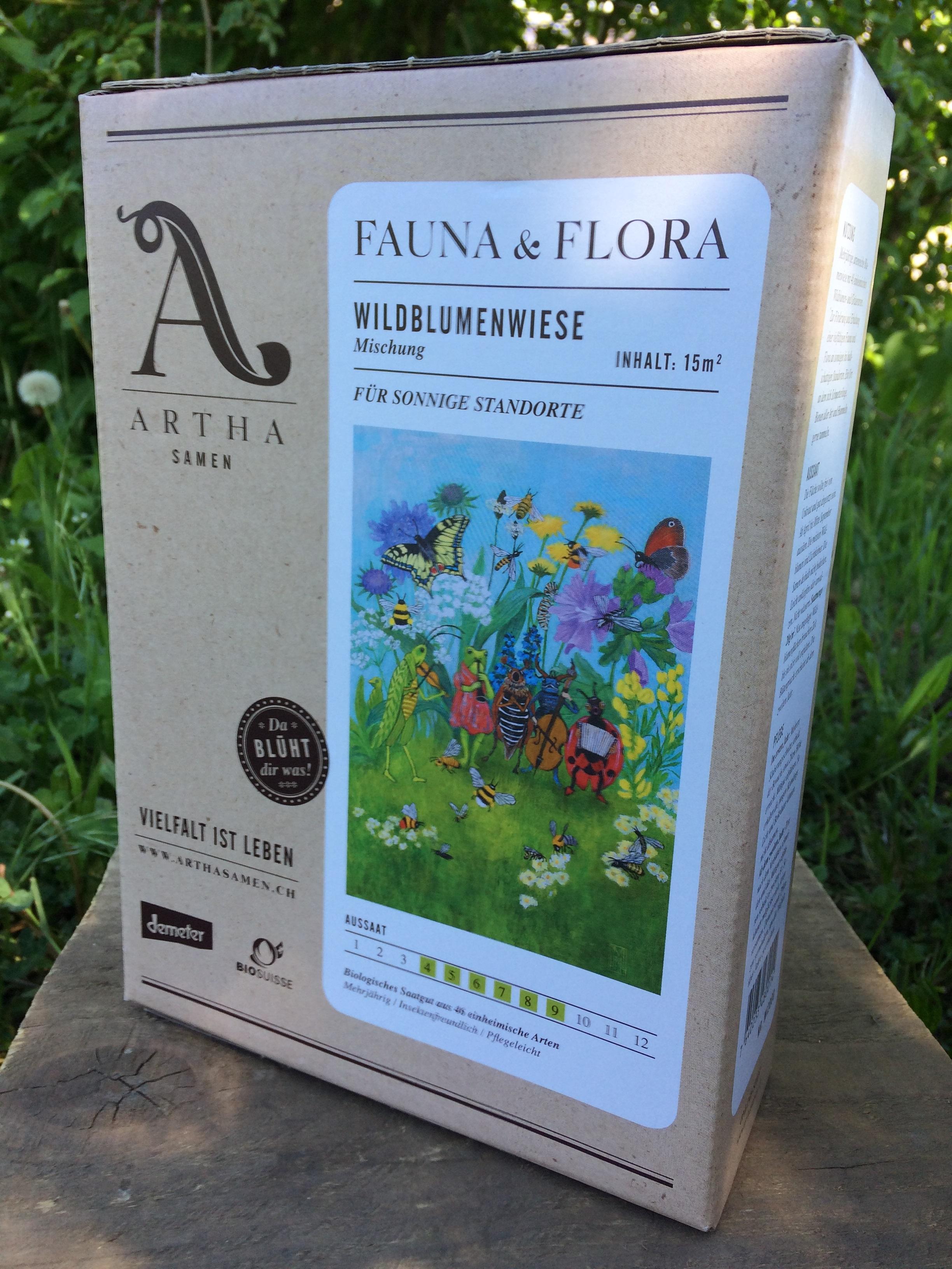 Wildblumenwiese sonnig 15m2